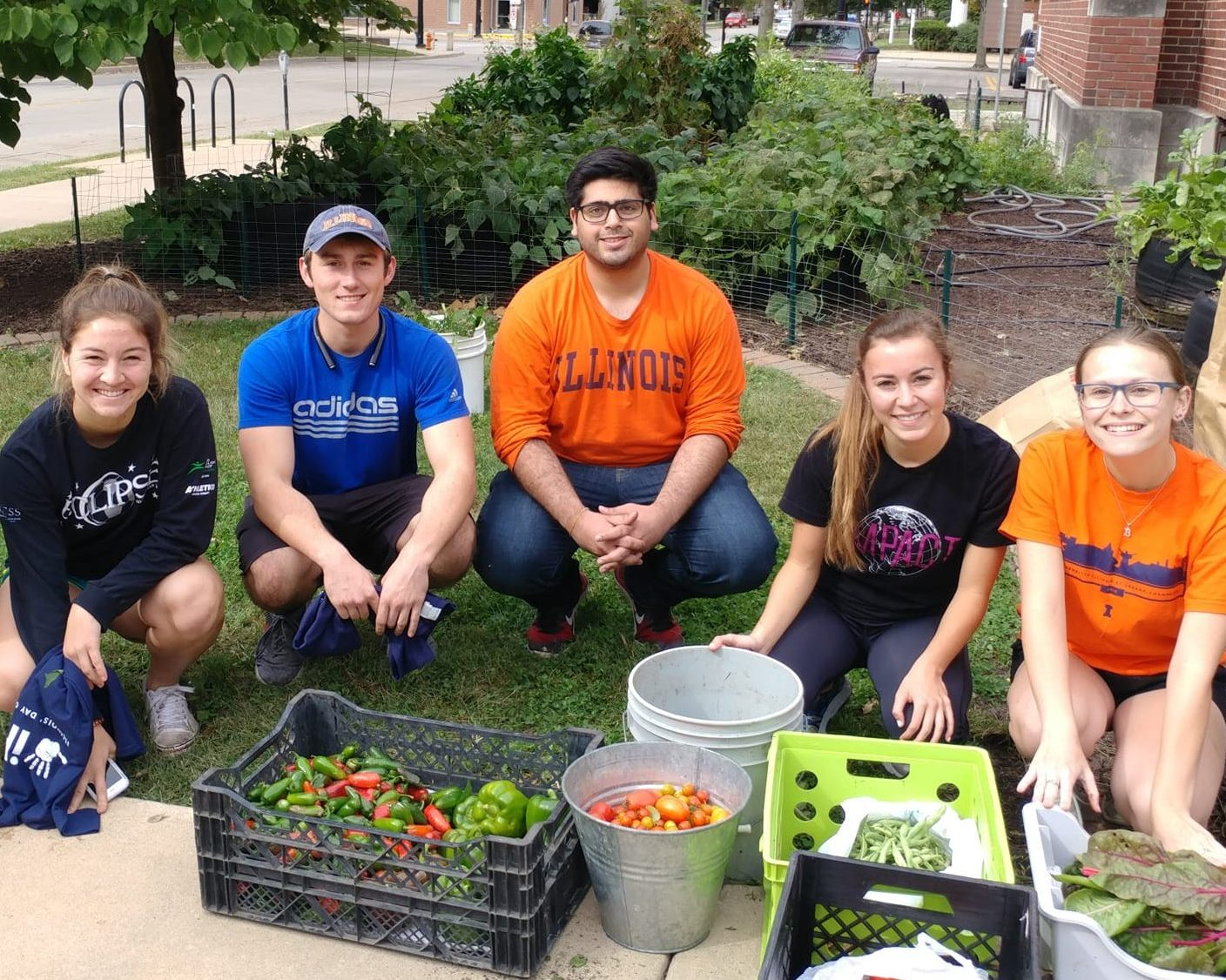 Illinois student volunteers display the day's harvest at the McKinley Giving Garden